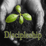 Developing an Environment for MBB Discipleship